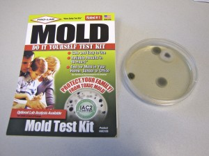 Home Mold Test Kit